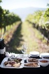 2018 Grazing in the Vineyard - Oct 2